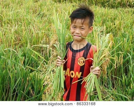 Asia Children, Rice Field