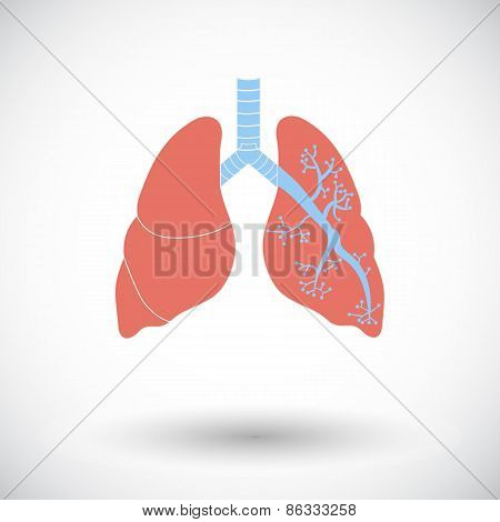 Lungs in Black and White