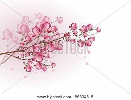 Dark Pink Magnolia Blossom