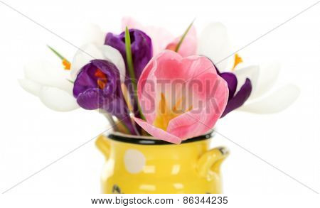 Beautiful spring flowers in yellow pot isolated on white
