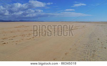 The vast sandy beaches of Fuerteventura