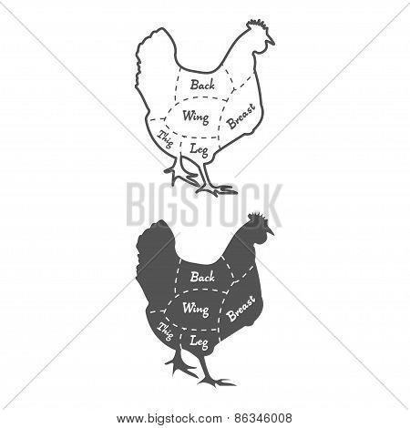 Vintage chicken cutting diagram on white backgrond