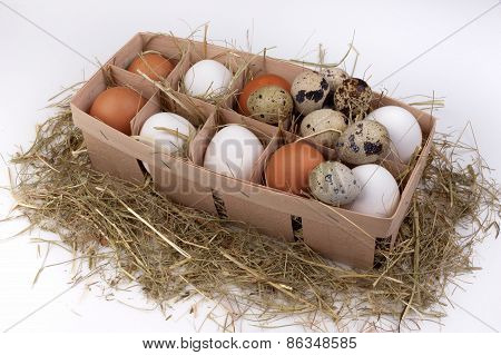 White And Brown Eggs In Hay Box Isolated On Background