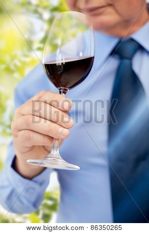 profession, drinks, holidays and people concept - close up of senior man drinking red wine from glass over green leaves background