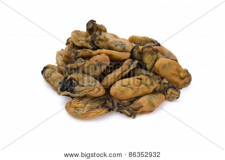 Dry Oysters On A White Background