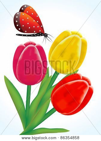 Abstract Artistic Colorful Detailed Tulip Flowers