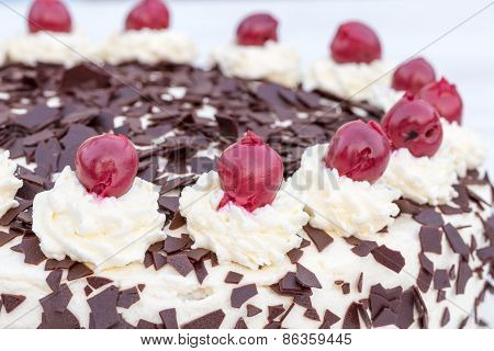 Black Forest Cake In Detail With White Background