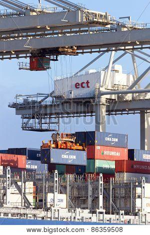 Container Crane Ship