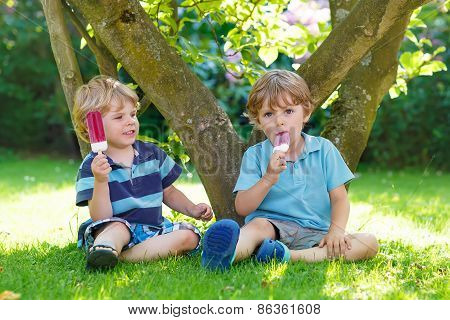Two Little Sibling Boys Eating Red Ice Cream In Home's Garden.