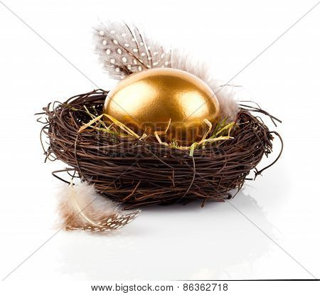 Golden Egg In Nest On White Background