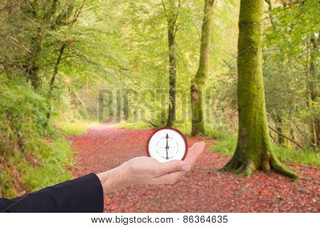 Close up of businessman with hand open against peaceful autumn scene in forest