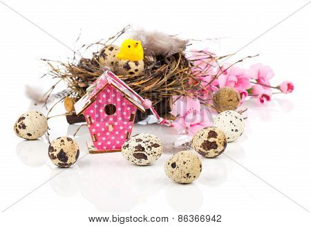 Easter Decoration On White Background With Quail Eggs And With Birdhouse, With Space For Text