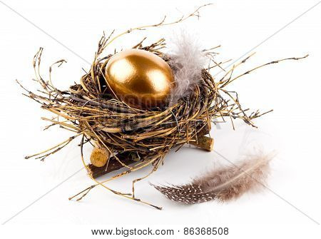 Golden Egg In Nest On White Background