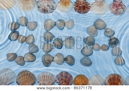 Word Sea Made Of Seashells Under Water