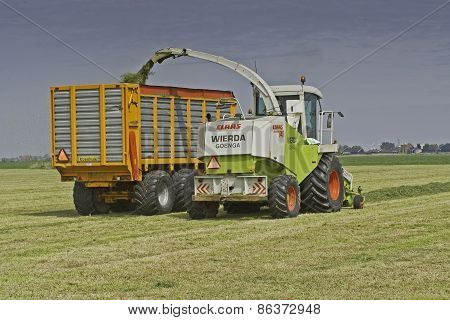 Claas chopper in meadow