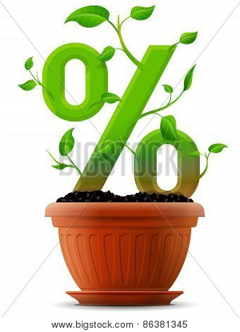 Growing Percentage Symbol As Plant With Leaves In Flower Pot