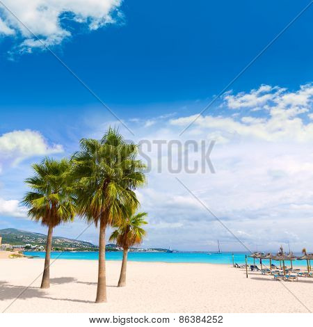 Majorca Platja Palmanova beach Son Maties Mallorca Calvia balearic islands of Spain
