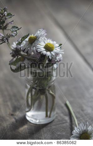Daisy Flower In Glass Jar