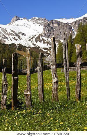 Alpine Scenic