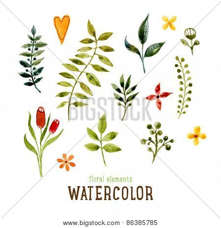Floral Set with Watercolor Flowers for Summer or Spring Cards, Invitations, Flyers, Banners or Posters Design. Aquarelle Flowers and Leaves Collection for Greeting and Wedding Cards