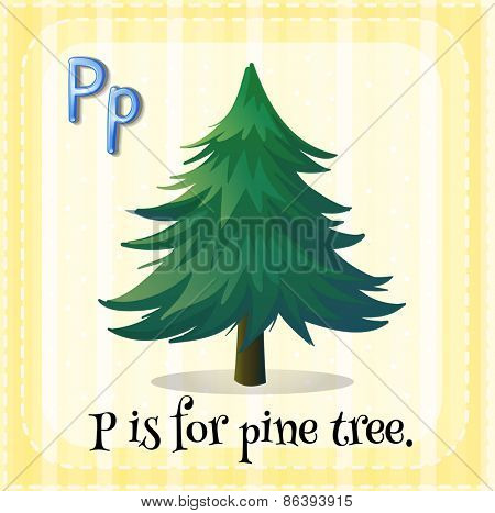 Flashcard letter P is for pine tree