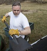 picture of shingles  - Man wearing work gloves taking shingles off roof - JPG