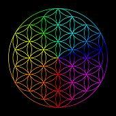 pic of kundalini  - Rainbow flower of life  - JPG