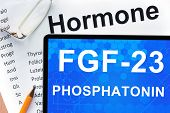 pic of hormones  - Papers with hormones list and tablet  with words  FGF - JPG