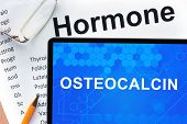 stock photo of hormones  - Papers with hormones list and tablet  with words  osteocalcin - JPG