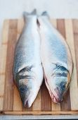 image of bass fish  - Fresh fish on a cutting board prepared for cooking