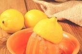 stock photo of juicer  - An organic lemon half of a citrus fruit juicer - JPG