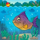 foto of piranha  - Piranha fish underwater theme 3  - JPG