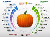 pic of horticulture  - Infographics about nutrients in winter squash - JPG