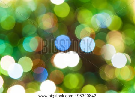 Green Blurred Shimmering Christmas Lights