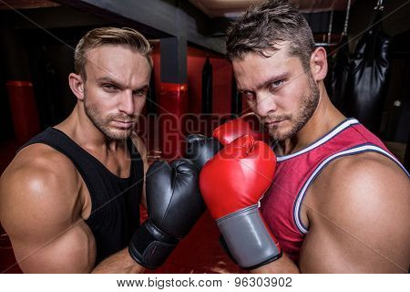 Portrait of two boxing men exercising together