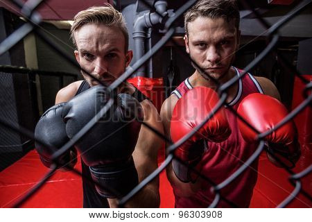Portrait of two boxing men behind the netting