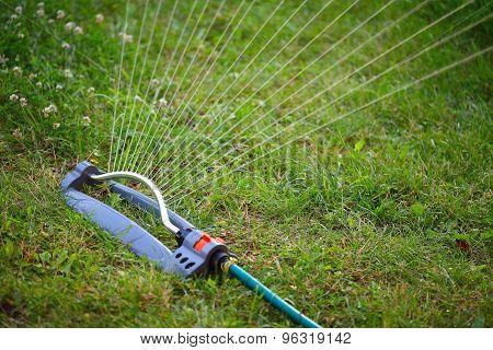 Water Sprinkler For The Garden