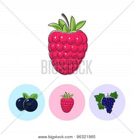Fruit Icons, Raspberries ,blueberries, Grapes