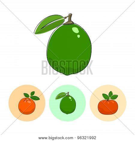 Fruit Icons, Lime , Orange,  Mandarin