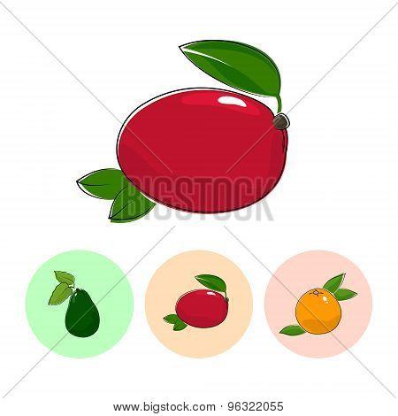 Fruit Icons, Mango ,avocado , Grapefruit