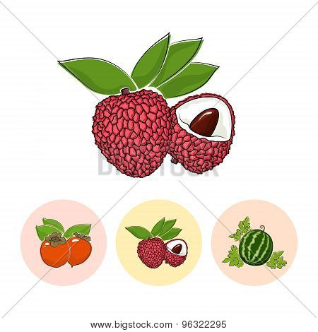 Fruit Icons, Lichee , Persimmon ,  Watermelon