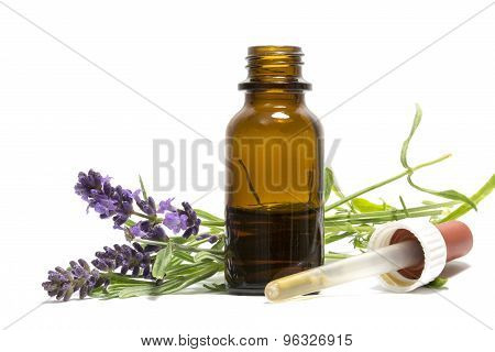 Lavender Oil, Flowering Branches And A Bottle With Dropper Isolated On White