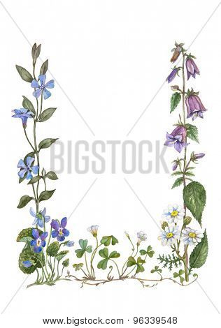 botanical water color frame from violet, camomile, bellflower, periwinkle, wood sorrel