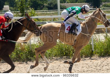 Horse Racing In Pyatigorsk