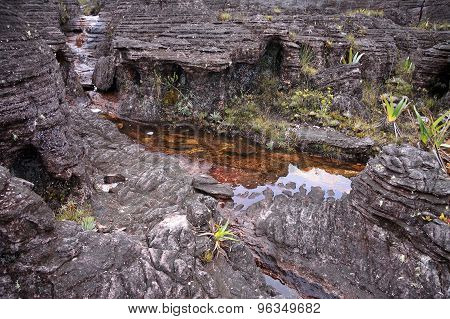 Closeup Of Unbelievable Rocky Terrain With Pools Of Mount Roraima