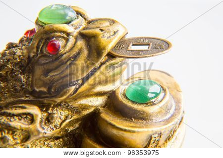 Money Frog With The Coin Symbolizing Wealth And Prosperity