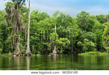 Wakulla Springs State Park And River