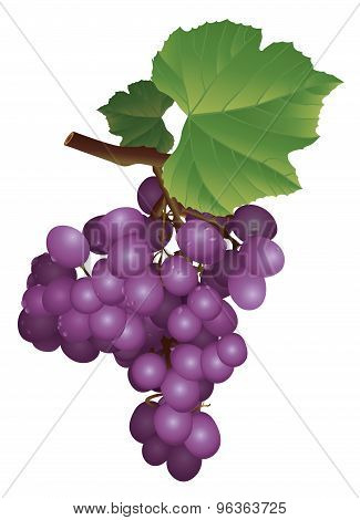 picture of a bunch of grapes