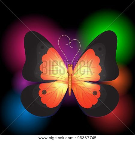 Butterfly On The Black With Lights