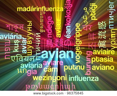 Background concept wordcloud multilanguage international many language illustration of avian glowing light